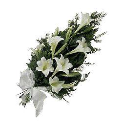 Цветы приносящие любовь